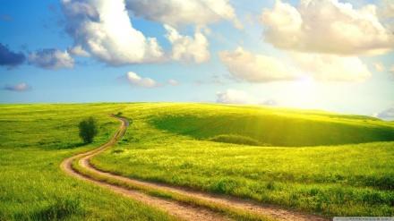 path-choise